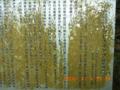 20100406130451