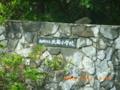 20100411094652