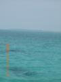 石西礁湖の黒島を望む