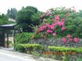 黒島の民家の風景