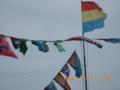 石垣島のハーリーの日