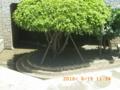 米須の地下ダム