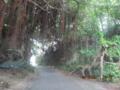 宮古島プライベートな近道