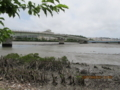 漫湖と国場川