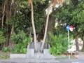 名護市ガジュマル公園