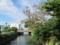 名護市幸地川と二本デイゴ