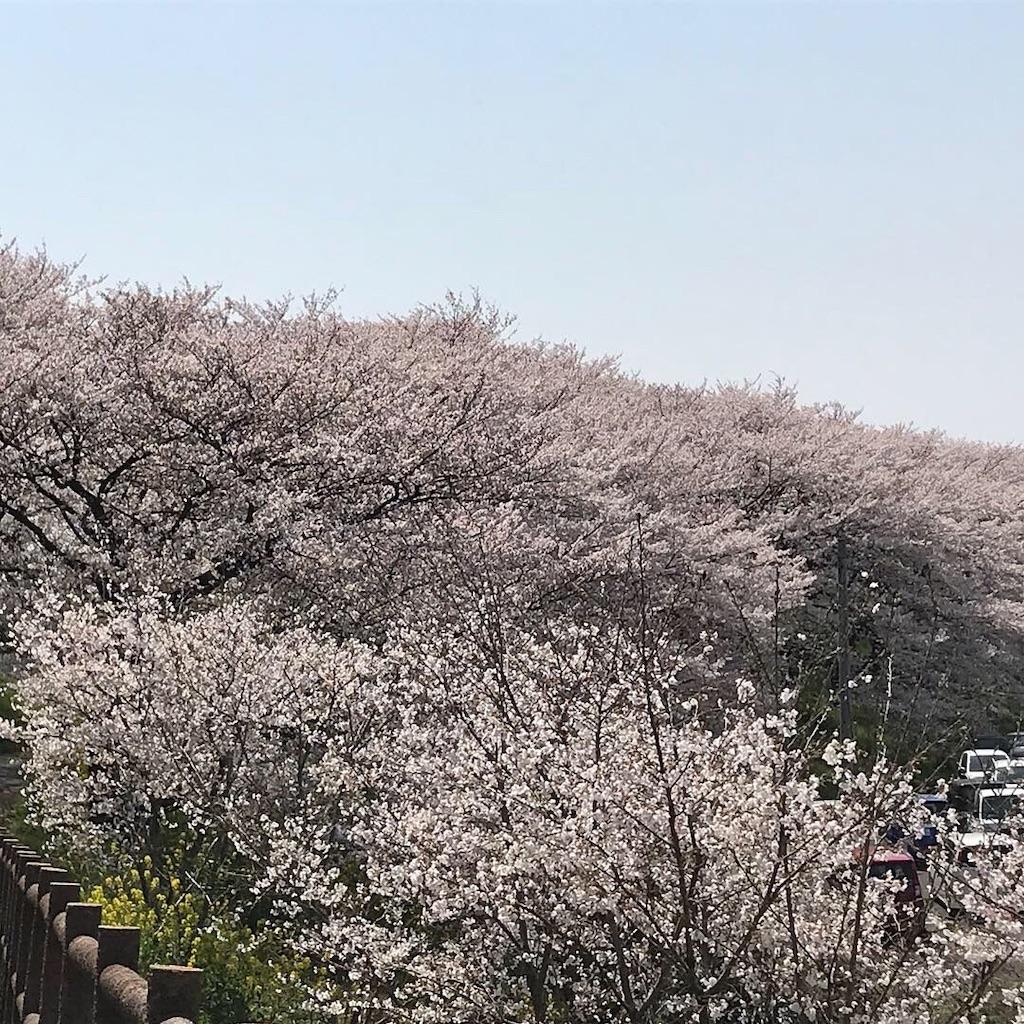 f:id:kazkazukazu:20190406154925j:image
