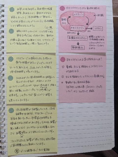 f:id:kazokunoegao:20210504095259j:image