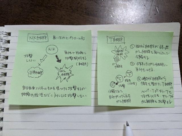 f:id:kazokunoegao:20210505020113j:plain