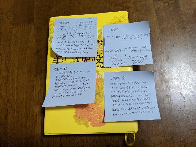 f:id:kazokunoegao:20210505222905j:image