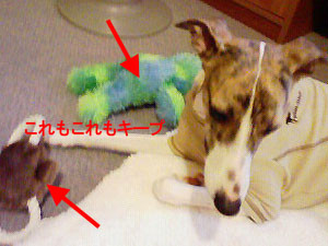 f:id:kazoo2008:20081223095314j:image