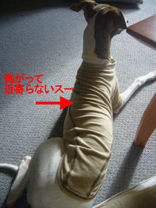 f:id:kazoo2008:20081227104258j:image