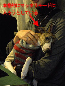 f:id:kazoo2008:20090104185514j:image