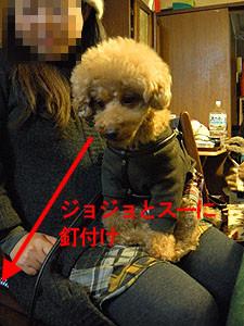 f:id:kazoo2008:20090104185519j:image