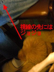 f:id:kazoo2008:20090104185520j:image