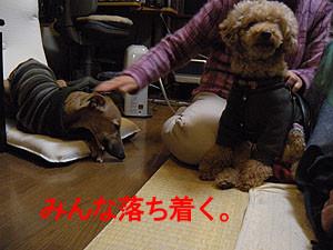 f:id:kazoo2008:20090104185531j:image