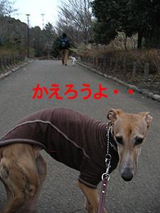 f:id:kazoo2008:20090125232406j:image