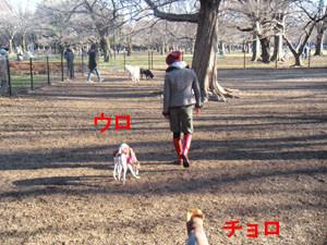 f:id:kazoo2008:20090205213452j:image