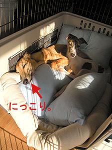 f:id:kazoo2008:20090226221823j:image