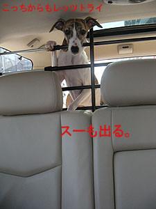 f:id:kazoo2008:20090228104618j:image