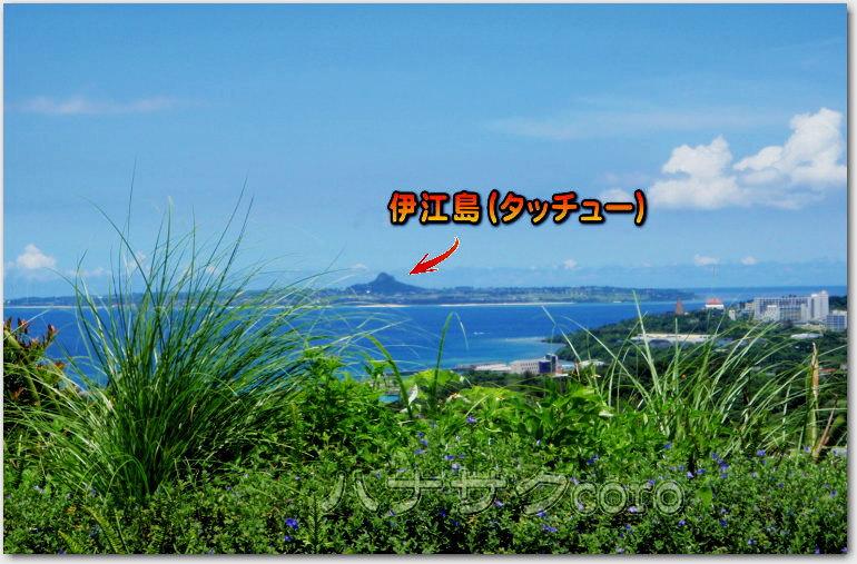 f:id:kazooman:20200706205737j:plain