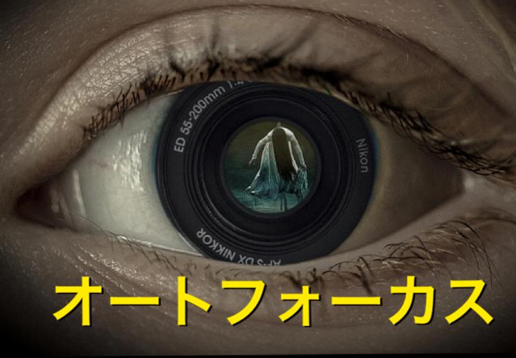 f:id:kazphotography:20190715211916p:plain