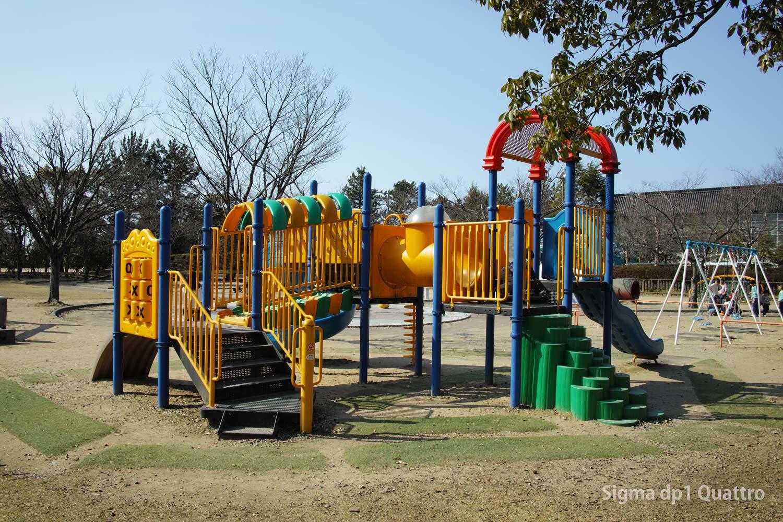 SIGMA dp1 Quattoro 公園の遊具