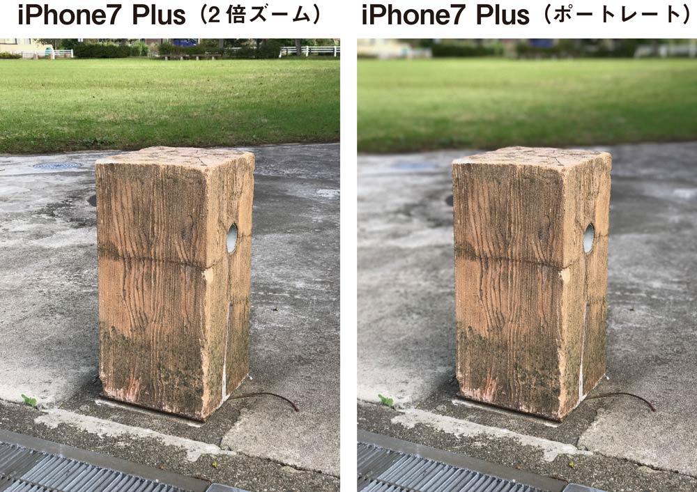 iPhone 7 Plus ポートレートモード2