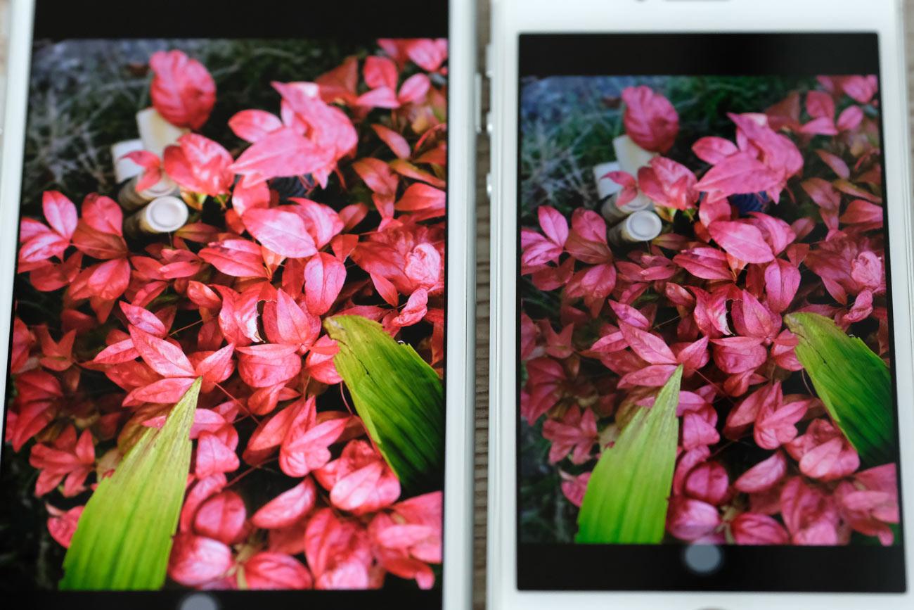 iPhone 8/7とiPhone SE 画面色の鮮やかさの違い