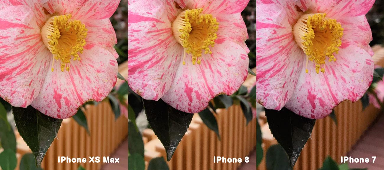 iPhoneのリアカメラ 画質の違い