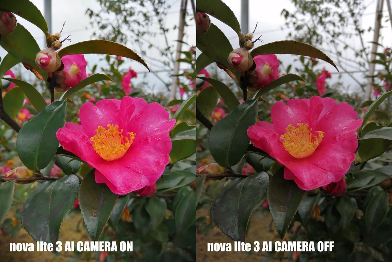nova lite 3 AIカメラ