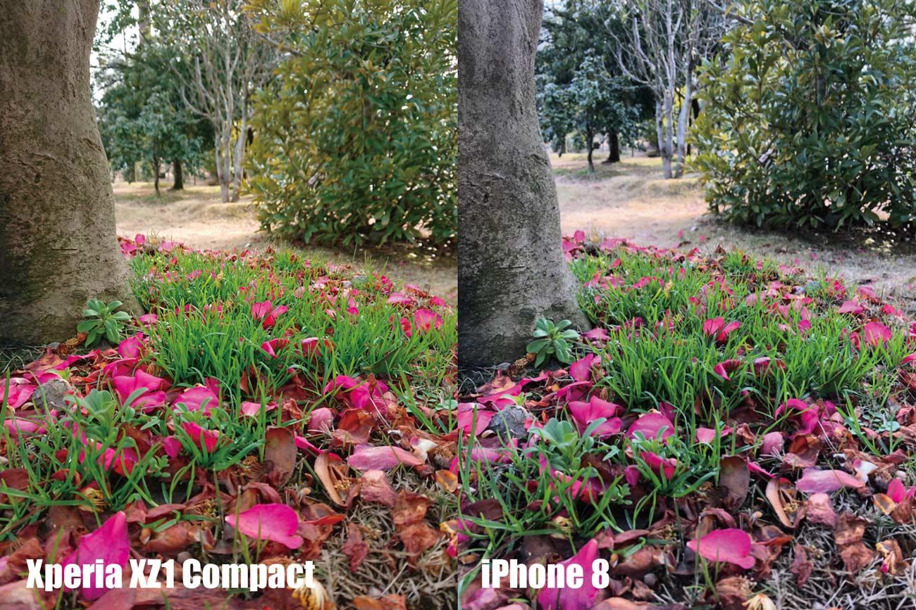 Xperia XZ1 CompactとiPhone 8 カメラ画質比較