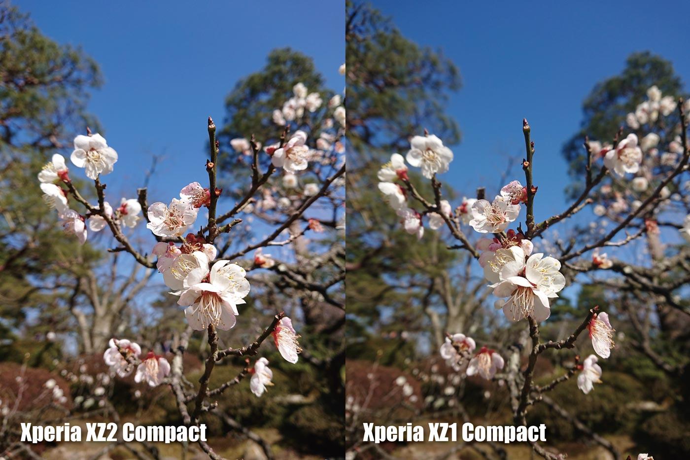 Xperia XZ2 Compact vs XZ2 Compact メインカメラの画質