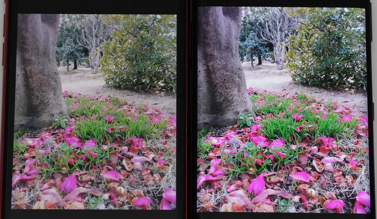 iPhone XRとXperia XZ3 ディスプレイの画質を比較
