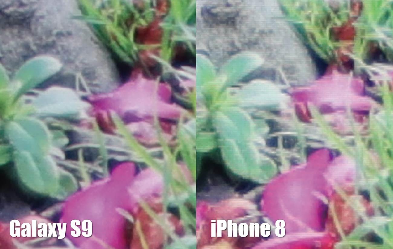Galaxy S9とiPhone 8 解像度の違い