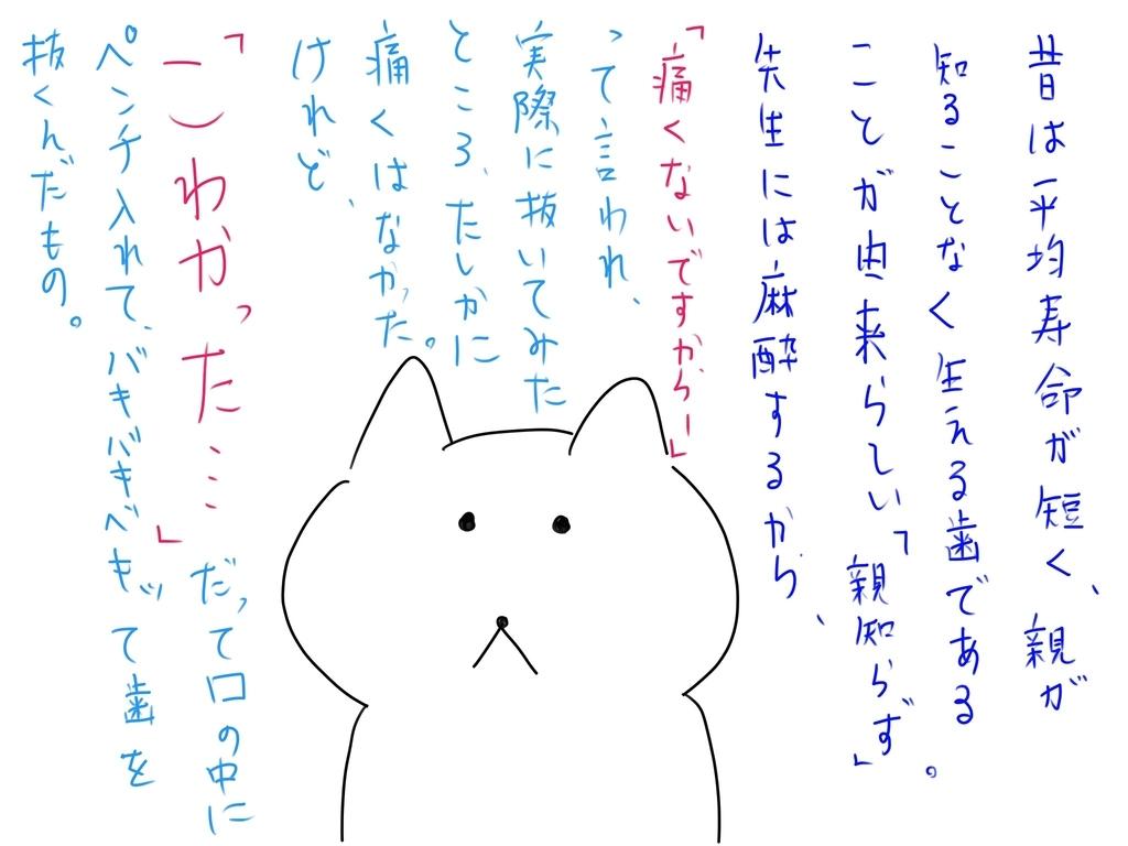 f:id:kazu-tabi:20190113143503j:plain