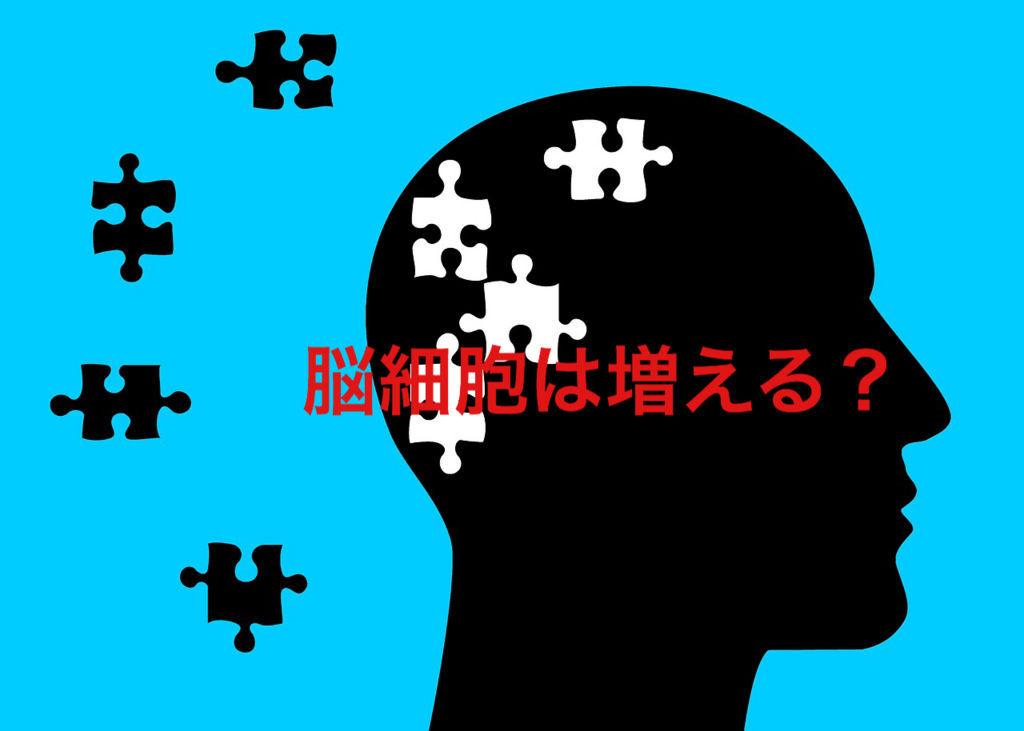 f:id:kazu532120:20180425205130j:plain