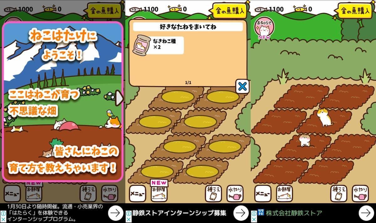 ねこ畑~ほっこり畑で猫育成 アプリ紹介画像