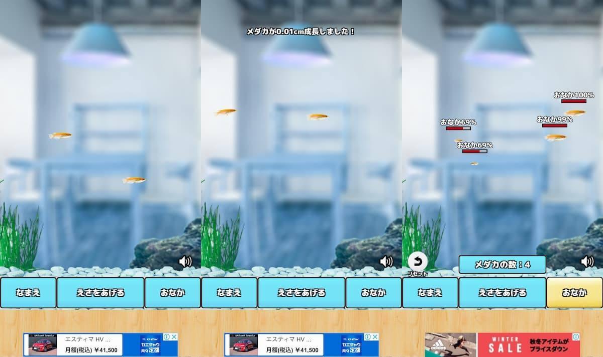 メダカ育成ゲーム アプリ紹介画像