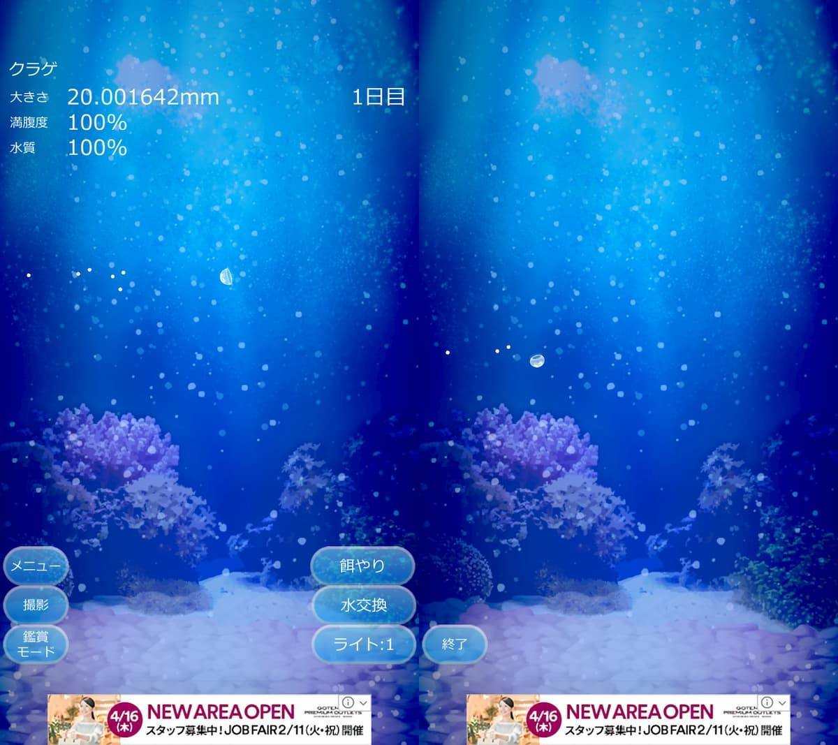 癒しのクラゲ育成ゲーム アプリ紹介画像