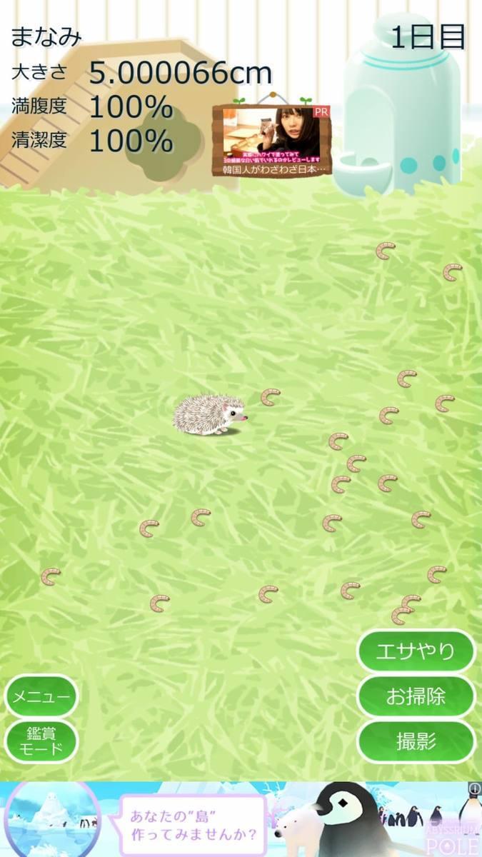癒しのハリネズミ育成ゲーム アプリ紹介画像