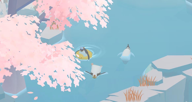 ペンギンの島 ペンギンがゆったり水に浮いている写真