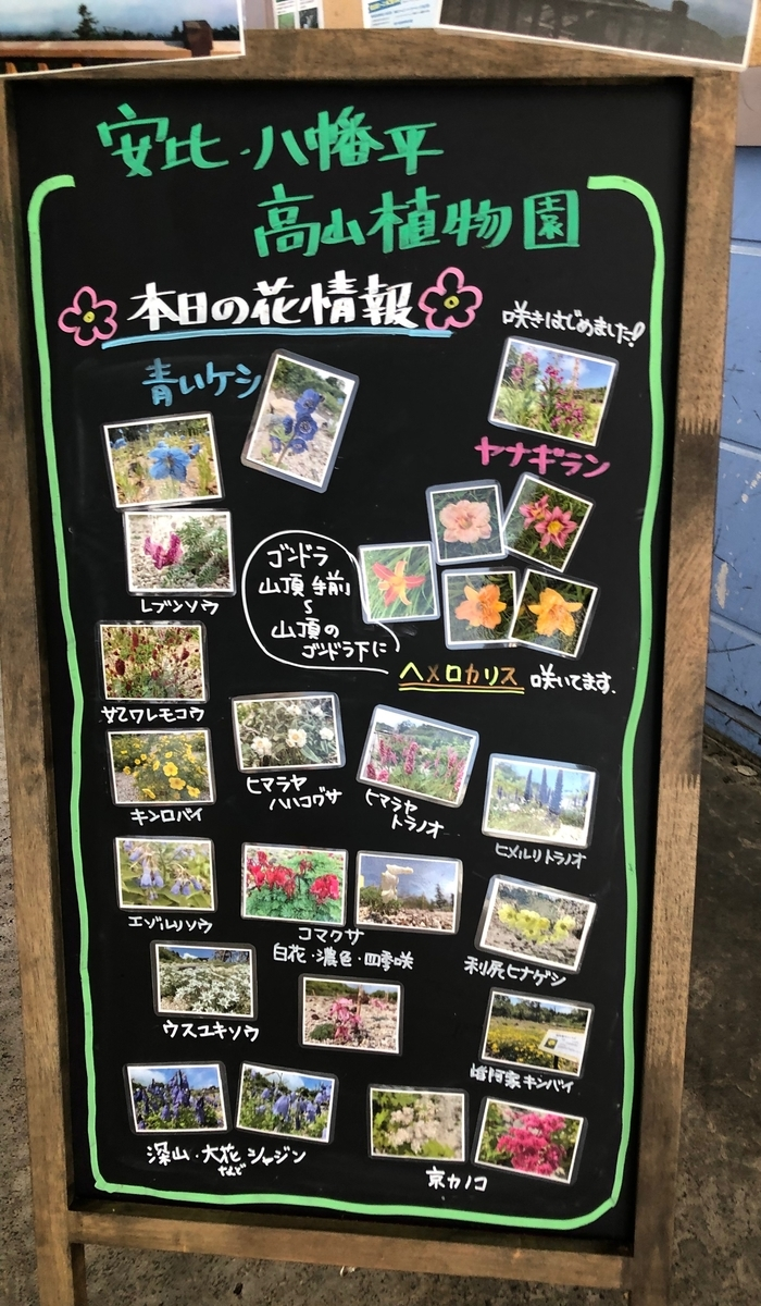 f:id:kazu_kazu_kazu:20190829084033j:plain