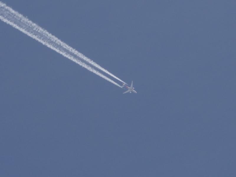 竹駒神社上空を飛ぶ飛行機と飛行機雲(岩沼市)