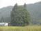 トトロの森(米沢市)
