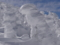 山形蔵王の樹氷(山形市)