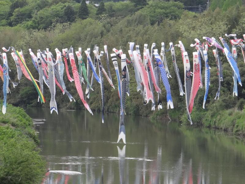 小櫃川河川敷(袖ヶ浦市)