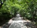 藤崎神社(由利本荘市)