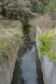 西ヶ谷池(京都市)