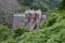 竜神ダム(常陸太田市)